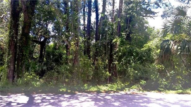 1425 Graves , Orange City, FL - USA (photo 5)