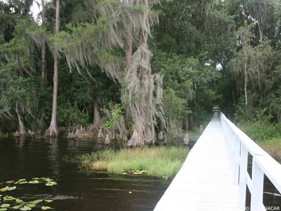 21214 114th , Waldo, FL - USA (photo 5)