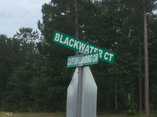 0 Blackwater Ct , Kingsland, GA - USA (photo 4)