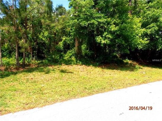 13 Erma , Debary, FL - USA (photo 3)