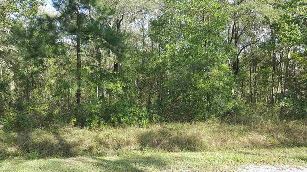 10140 Underwood Ave , Hastings, FL - USA (photo 2)