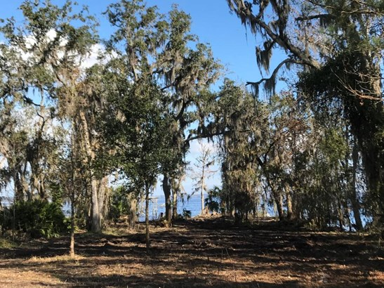 4661 Raggedy Point , Orange Park, FL - USA (photo 2)
