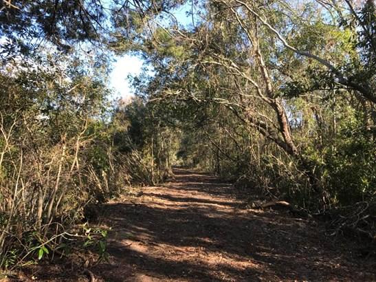 4661 Raggedy Point , Orange Park, FL - USA (photo 3)