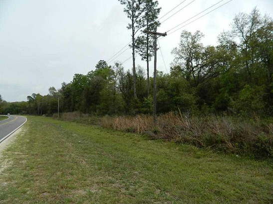 0000 Vacant Land South Side Of County Road 18 , Fort White, FL - USA (photo 2)
