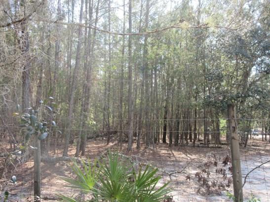 4380 Bellamy , Florahome, FL - USA (photo 1)