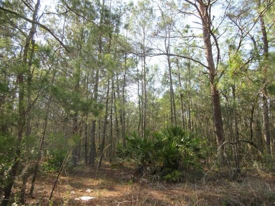 4380 Bellamy , Florahome, FL - USA (photo 5)