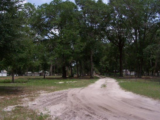 00 Alabama , Palatka, FL - USA (photo 5)