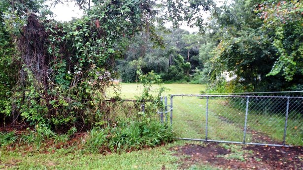 3442 Turton , Jacksonville, FL - USA (photo 3)