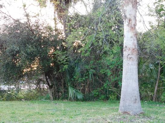 0 21 , Jacksonville, FL - USA (photo 3)