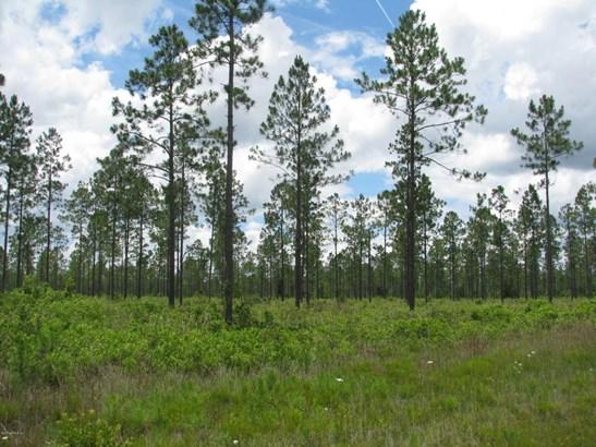 0 Sagebrush 1192 1192, Callahan, FL - USA (photo 1)