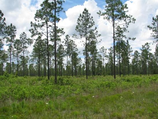 0 Sagebrush 1192 1192, Callahan, FL - USA (photo 2)