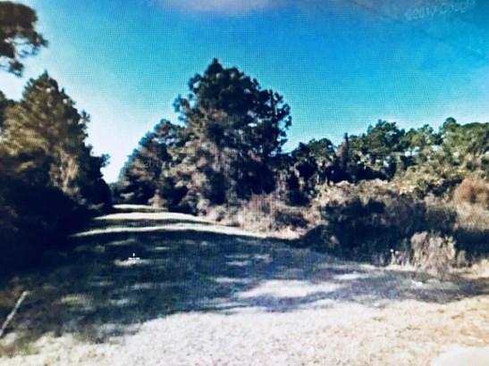 0000 Dogwood , Georgetown, FL - USA (photo 1)
