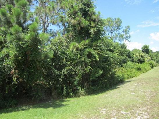 0 Buteo Place, Titusville, FL - USA (photo 1)