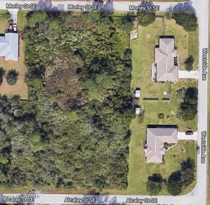 1686 Morley Street, Palm Bay, FL - USA (photo 2)