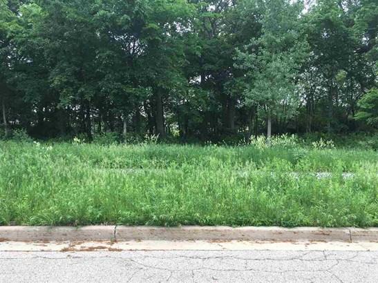Land - BELVIDERE, IL (photo 1)