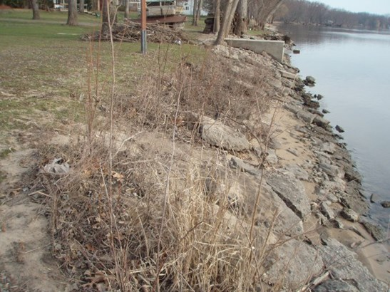 Land - MACHESNEY PARK, IL (photo 2)