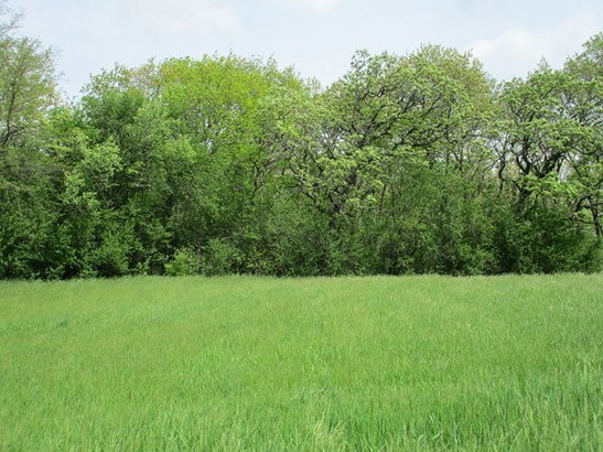 Partially wooded (photo 2)