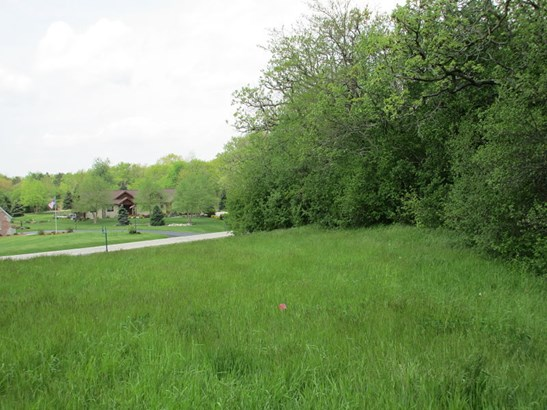 Backyard densely wooded (photo 5)