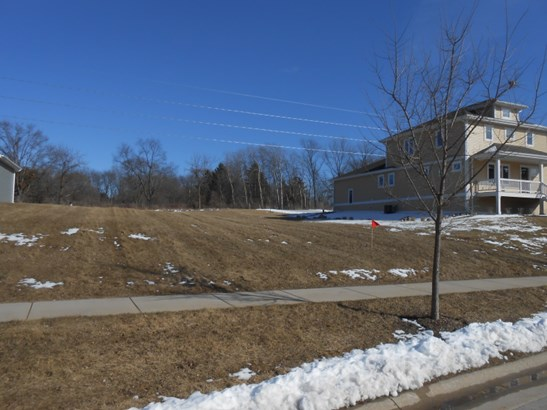 WALK TO DOWNTOWN DELAFIELD (photo 2)