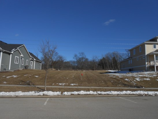 AN AREA OF NEWER HOMES (photo 4)