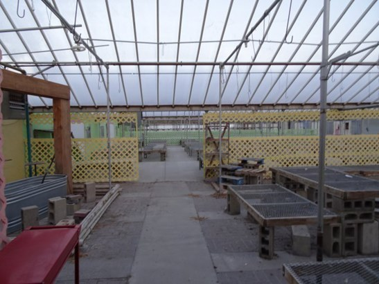 Greenhouse (photo 4)