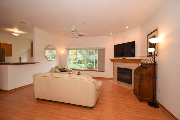 Living Room Gas Fireplace (photo 3)
