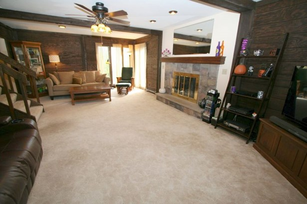 Living Room Gas Fireplace (photo 2)