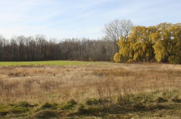 Monica's Meadows Subdivision (photo 4)