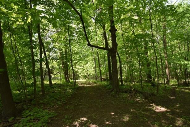 Woods (photo 5)