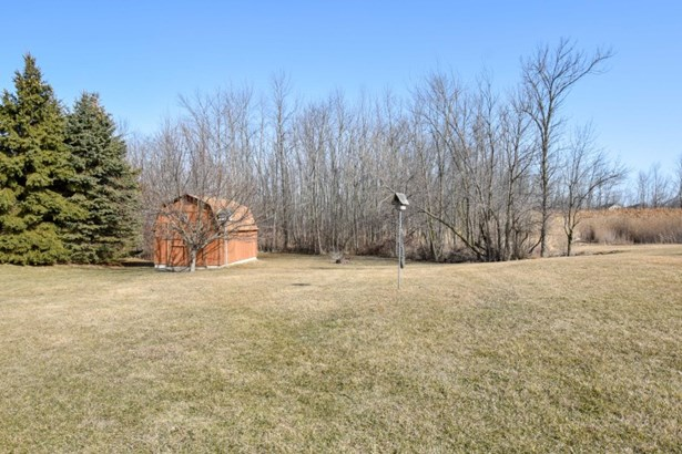 Yard (photo 3)