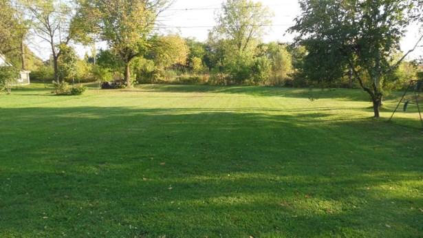 Yard (photo 2)