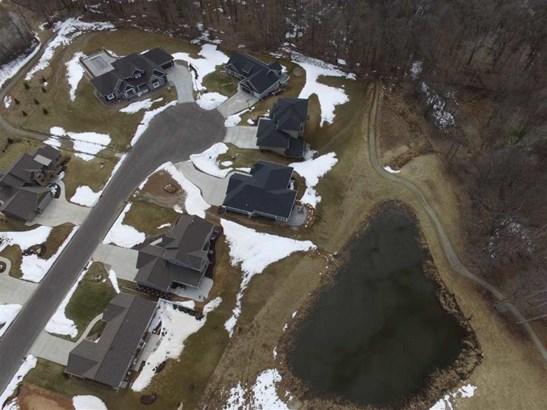 Backyard pond (photo 5)