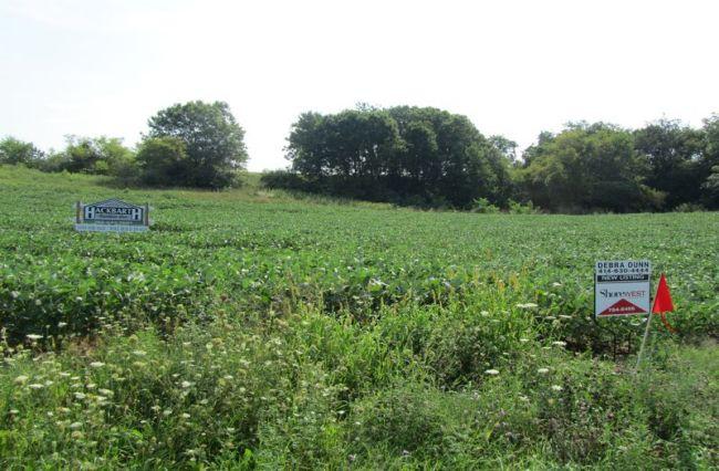 Adams Road Farm Estates (photo 2)