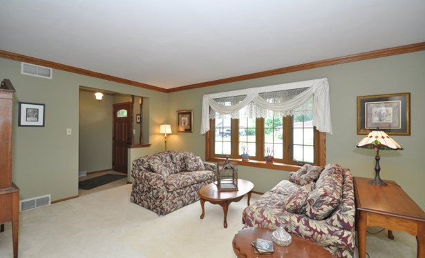 Natural FP in Family Room (photo 4)