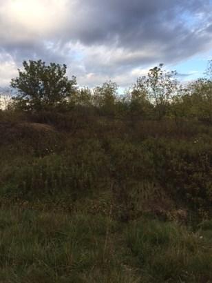 2.66 acre privacy (photo 2)