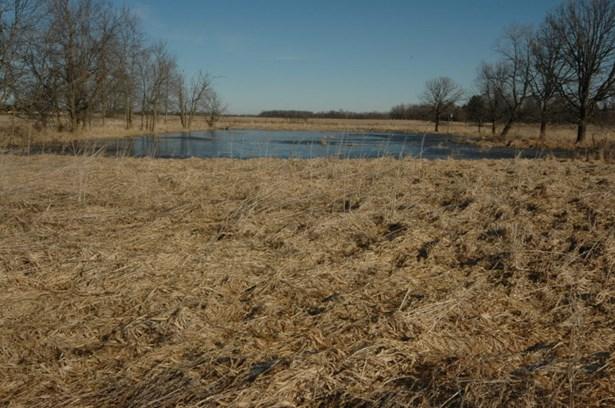 The pond (photo 5)