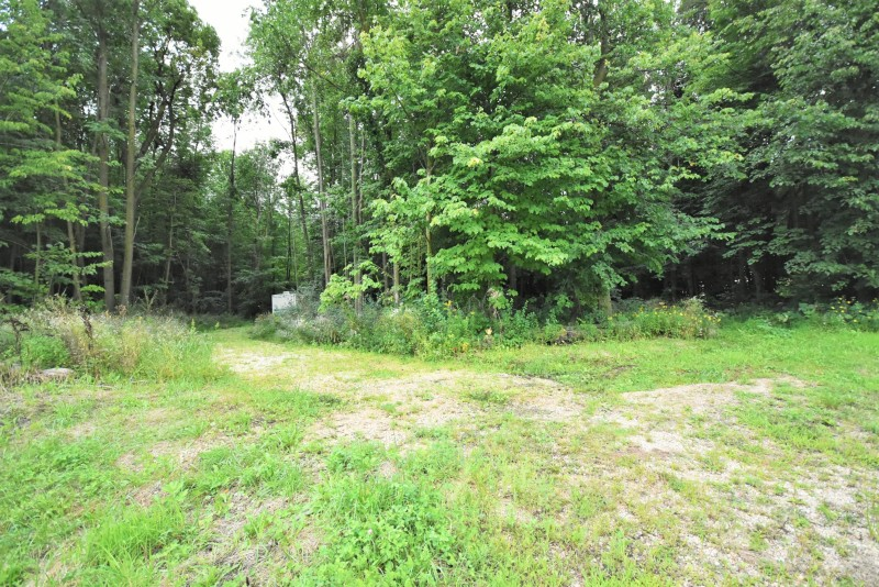 Beautiful wooded lot (photo 2)