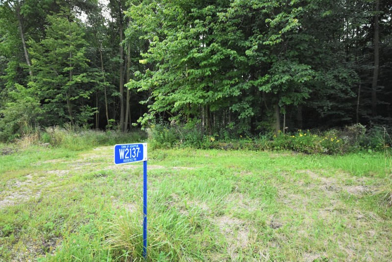 Beautiful wooded lot (photo 3)