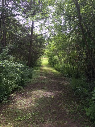 Walking paths (photo 4)