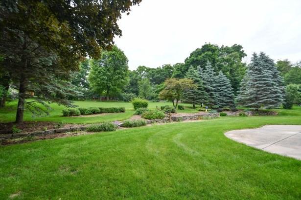 Patio and Backyard (photo 2)