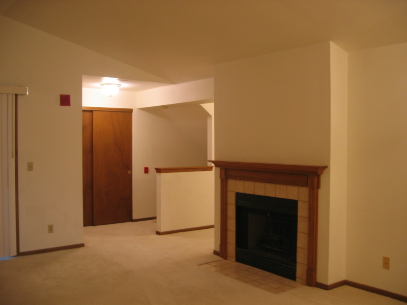 Great Room w/ Vaulted Ceiling (photo 5)