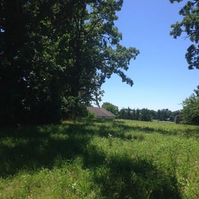 Oak Trees (photo 4)