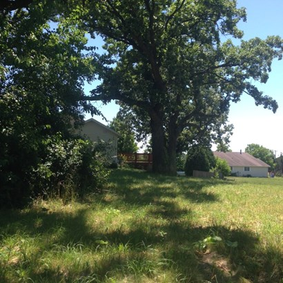 Mature Trees (photo 5)