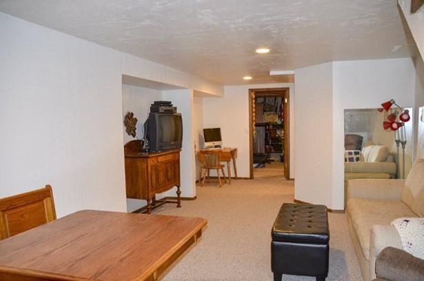 Lower Level Fam. Room (photo 2)