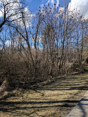 Large Wooded Lot! (photo 3)