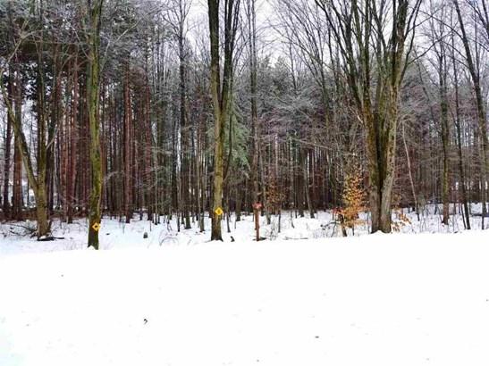 Wooded Backyard (photo 3)