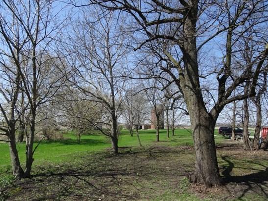 Back of Yard (photo 4)