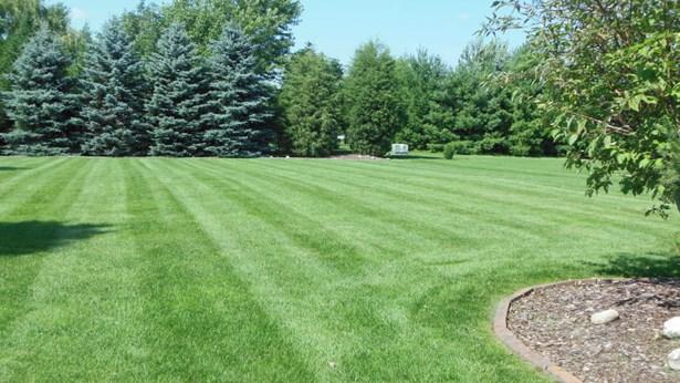 Back Yard 0.67 Acres (photo 2)