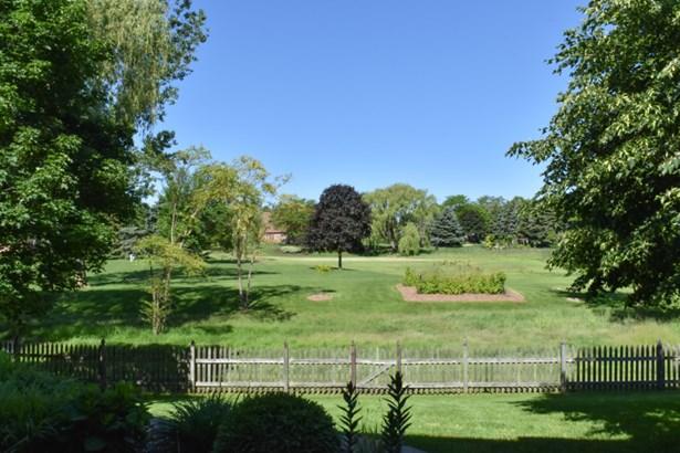 Private back yard (photo 3)
