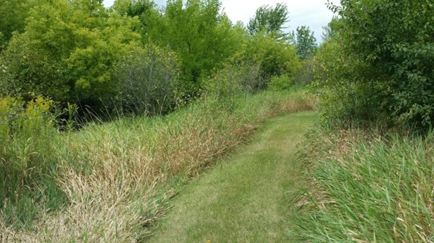 2 acre wooded lot (photo 2)